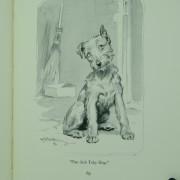 Thy Servant a Dog
