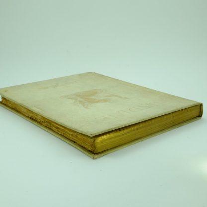 Undine-De-La-Fouque-Illustrated-Arthur-Rackham first editon