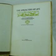 The-Springtide-of-life-poems-of-childhood-by-Algernon-Charles-Swinburne-Ilustrated-by-Arthur-Rackham-limited-edition-signed