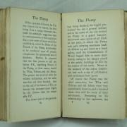 The Flamp Dumpy book