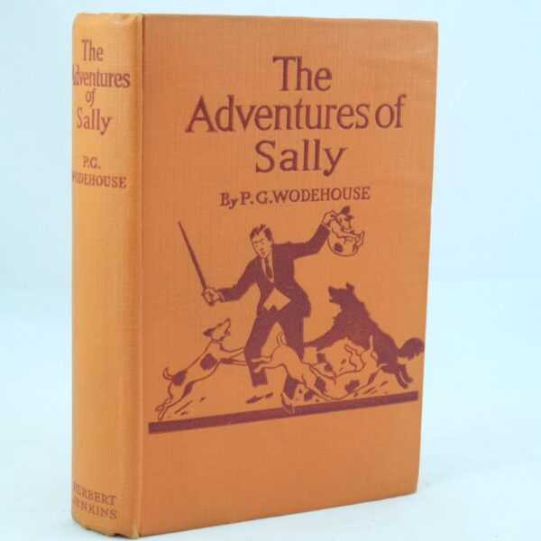 The Adventures of Sally by P G. Wodehouse (6)