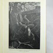 Adventures of Gerard by A Conan Doyle